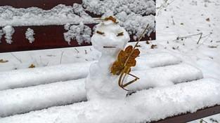 05.12.2020 00:00 Pierwszy śnieg w Polsce