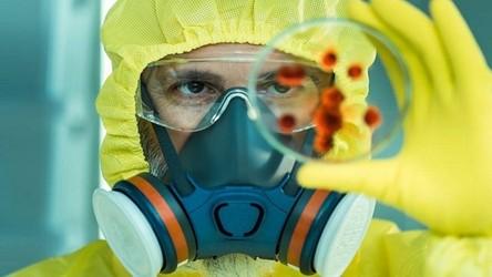 Naukowcy odkryli nowe, nieznane wcześniej koronawirusy u przemycanych zwierząt