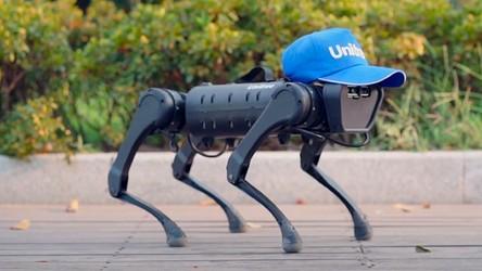 Zobacz, jak tańczy Unitree A1, czyli najnowszy robo-pies prosto z Chin [FILM]