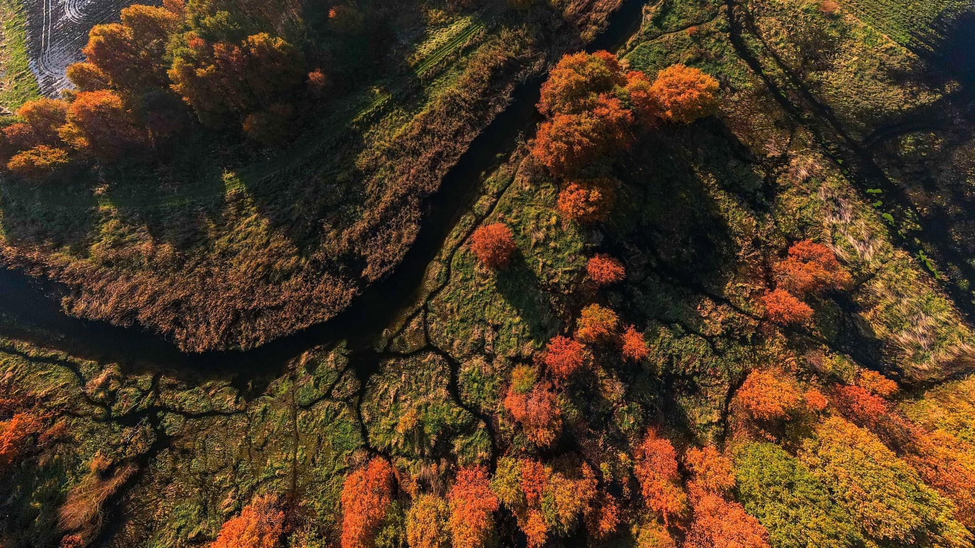 Jesień w Polsce z lotu ptaka - zdjęcie 3