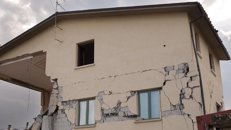 Trzęsienie ziemi w Meksyku. Wstrząsy odczuwalne w stolicy