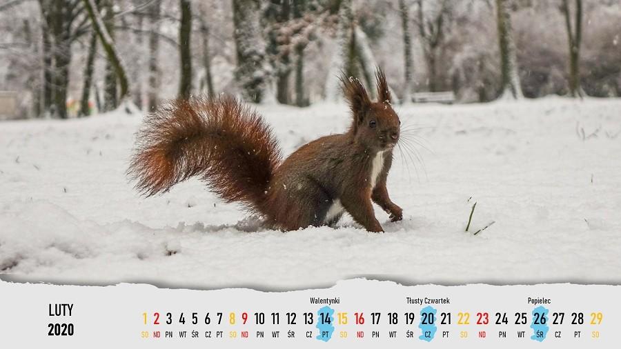 Serwis randkowy kalendarza
