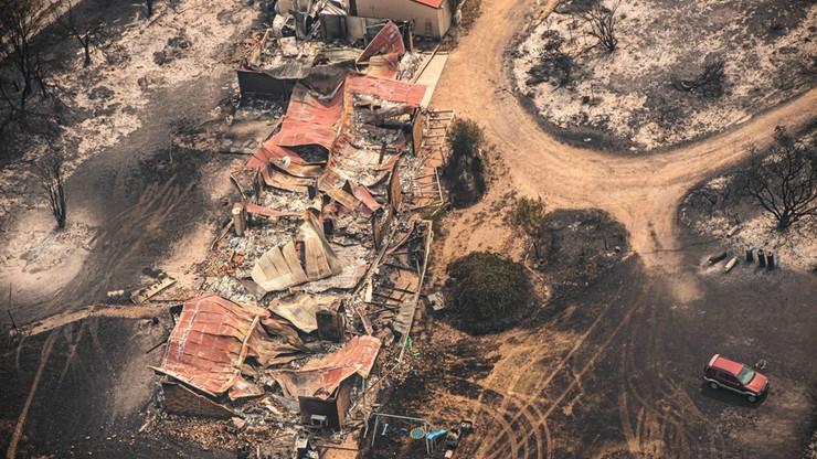 Tragiczne pożary w Australii. Mieszkańcy krytykują premiera Scotta Morrisona